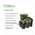 Mein schöner Garten Kräuter-Mix (2)