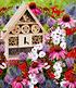 18er Bienen-Pflanzenmix mit Insektenhaus,1 Set (4)