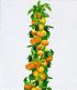 Obst für Balkon & Terrasse,5 Pflanzen (4)