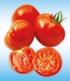 Veredelte Tomaten-Kollektion La sélection du Chef®,4 Pflanzen (4)