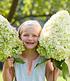 """Freiland-Hortensie """"Herkules®"""",1 Pflanze (3)"""