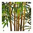 Kunstpflanze Bambusbaum (3)