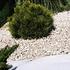 NOOR Unkrautfolie Unkrautblocker weiß 105 g/m² 0,9x10m (3)