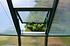 Rion Gewächshaus Grand Gardener 44, 267x 264x 238 cm (BxTxH) (3)